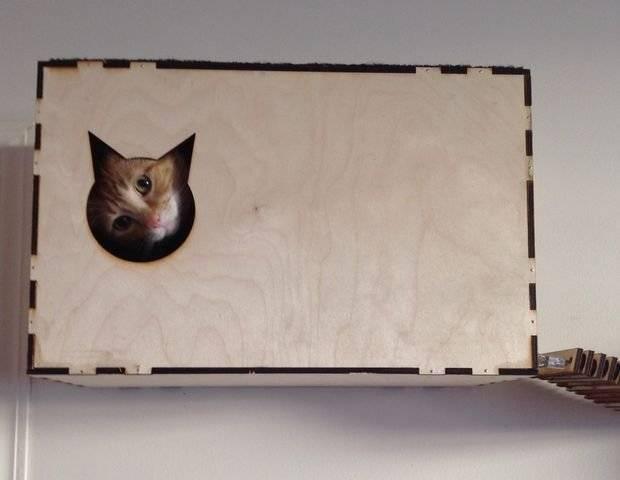 Необычный домик для кошки своими руками.