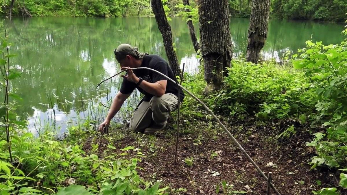 6e53d59c05d87cabc01ed05b1ea95d34 - Как сделать автоматическую удочку в лесных условиях