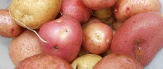 23b133c72cd21458bf6dac2f64d9e52d 330x140 - Четыре эффективных приема для повышения урожайности картофеля