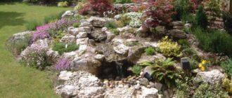 ТОП 7 растений, для альпийской горки на вашем участке.